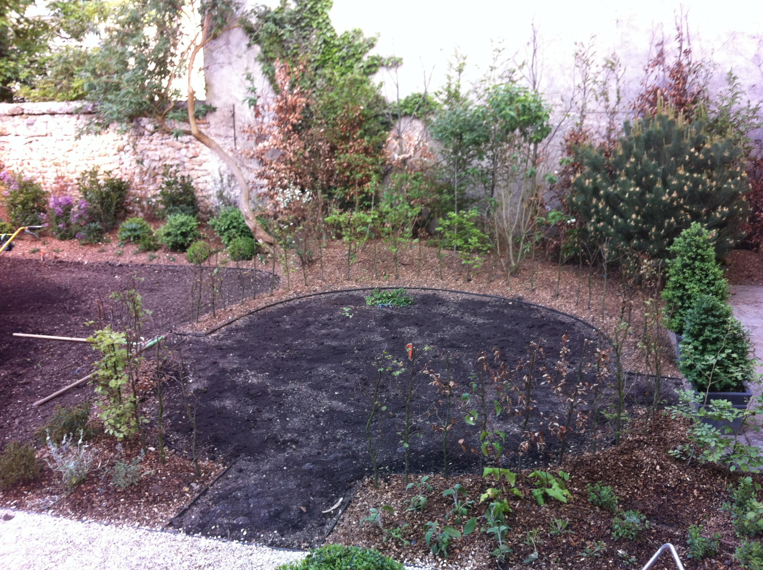 Yvelines 78 un jardin for Jardin yvelines