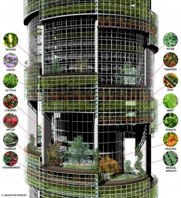 agriculture au coeur des villes