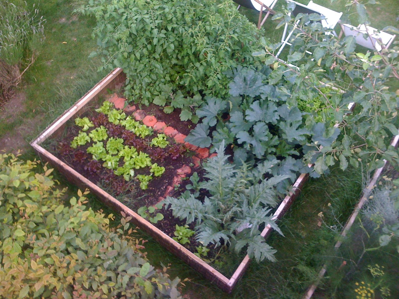 Cr er son potager en ville un jardin - Creer un jardin potager ...